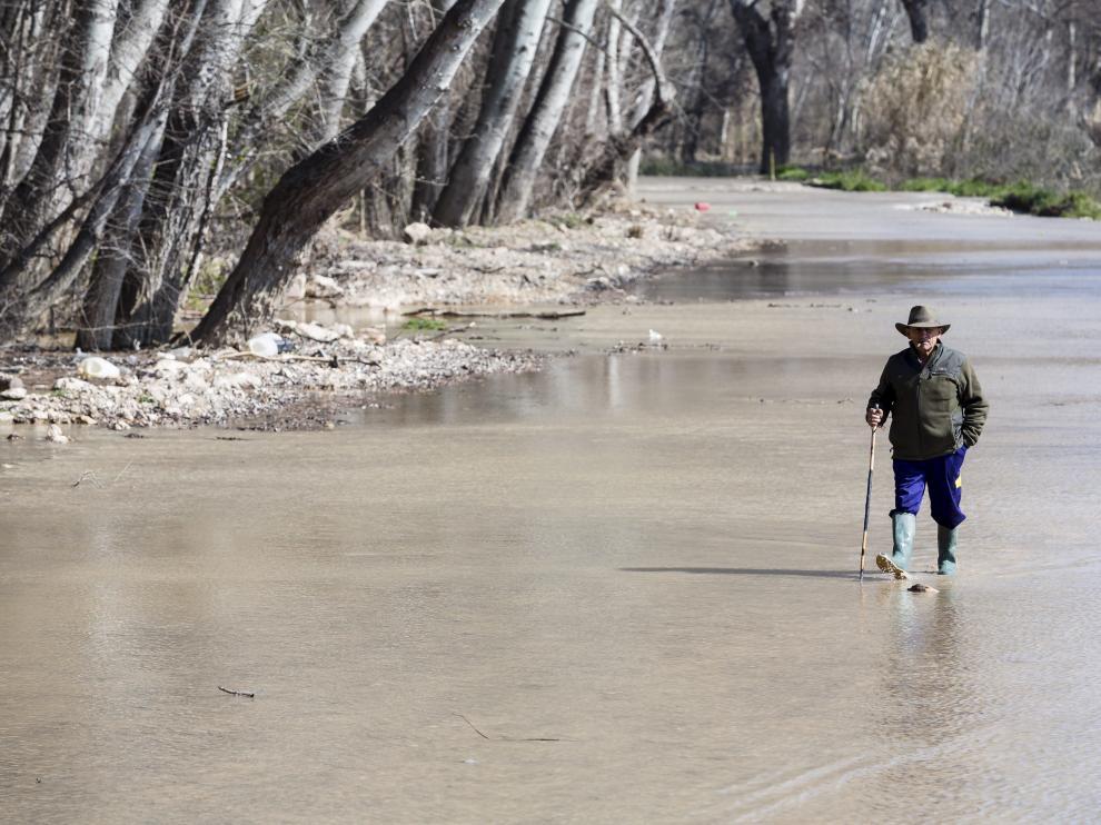 Un agricultor de Boquiñeni revisa la zona inundada por el río Ebro, en una foto de 2016.