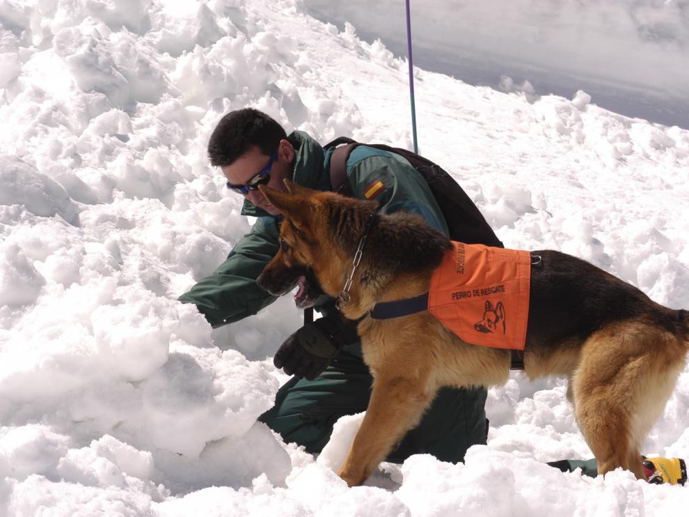 El cabo Sergio Orna, haciendo un ejercicio con su perro de rescates Arnold