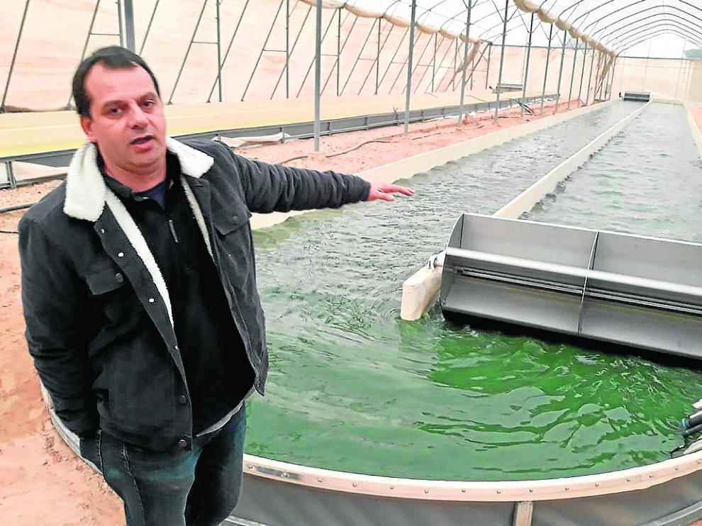 Yair Kohn, investigador de acuicultura, ante el tanque de cultivo de algas de la planta de Israel.