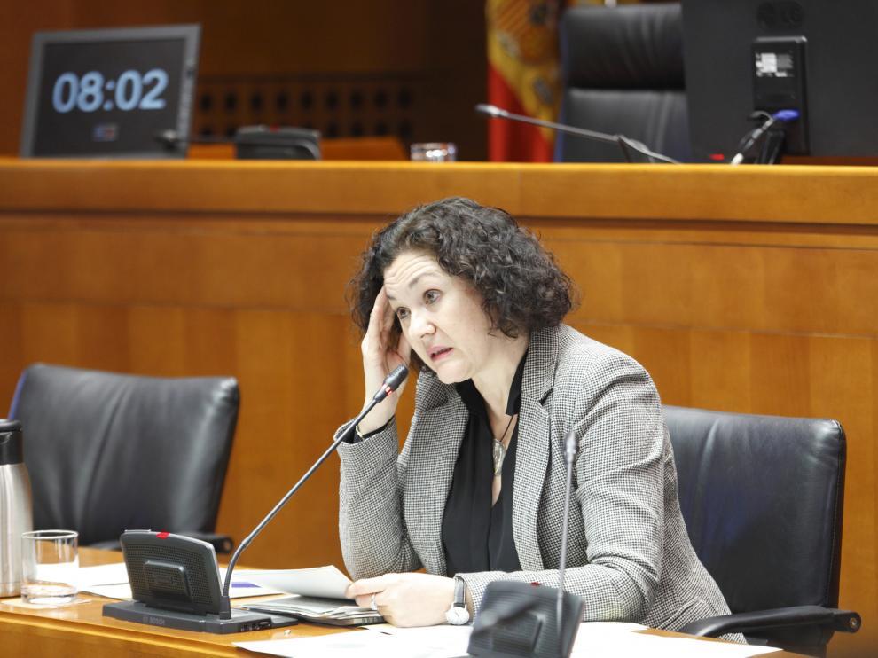 La directora general de Sostenibilidad, ayer en las Cortes