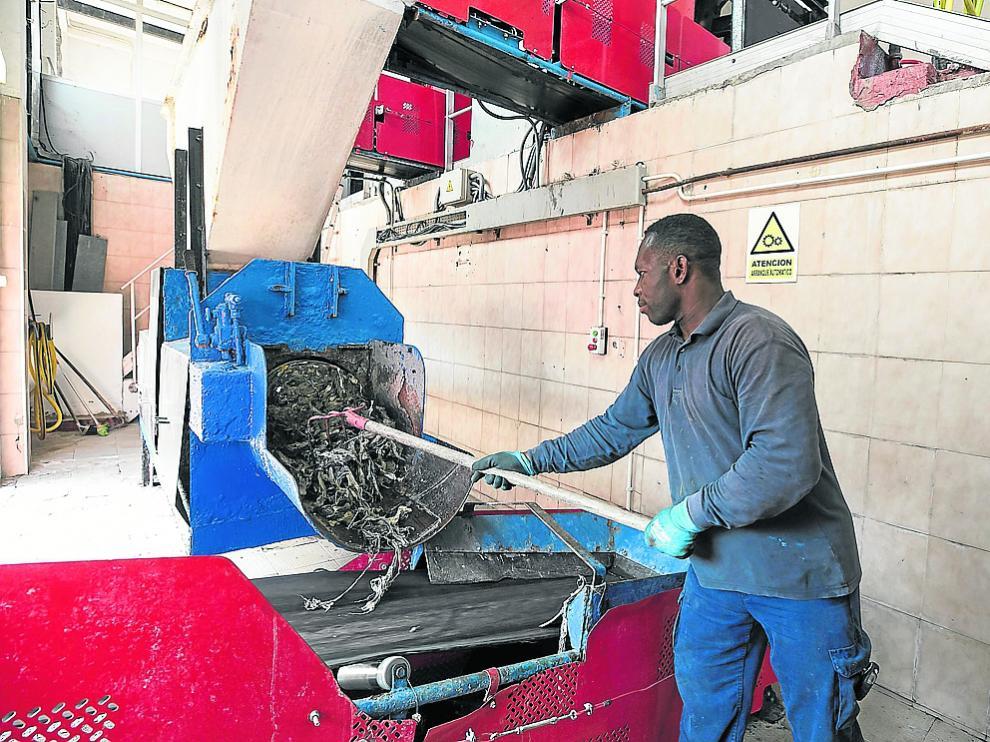 Uno de los trabajadores de la planta potabilizadora de La Almozara retira restos de toallitas.