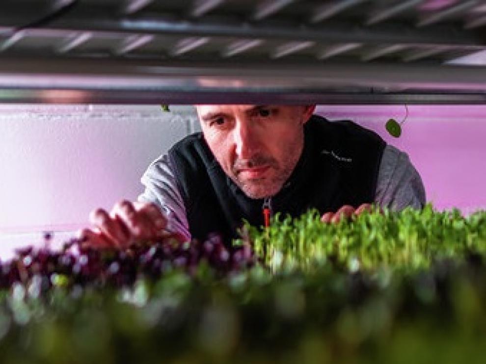 Juan Naudín, impulsor de Zgreens, con sus cultivos en unas instalaciones del CEEI.