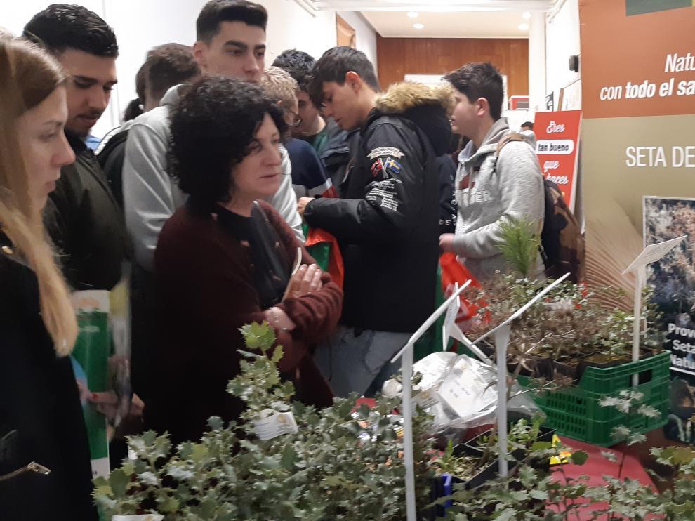 Numerosos jóvenes asisten a la Feria de Empleo organizada para celebrar el 50 aniversión del CPIFP Movera