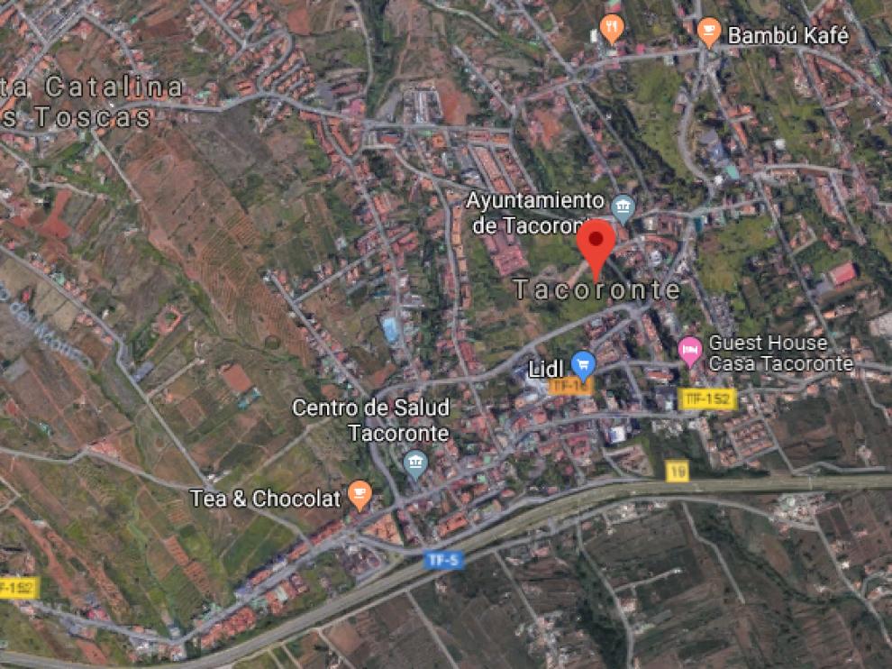 La plaga de termitas que se ha detectado sobre todo en el municipio de Tacoronte.