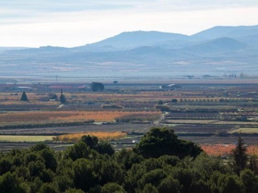 La Almunia limpiará caminos rurales en marzo.