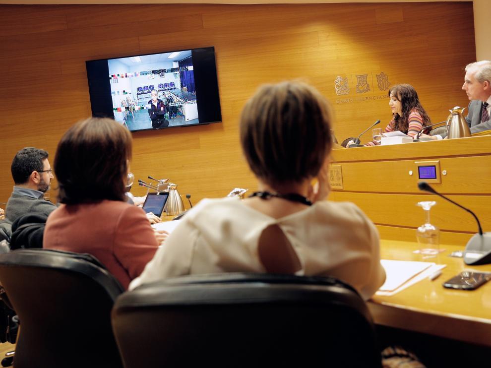 Vijdeoconferencia de Álvaro Pérez, ante las Cortes valencianas