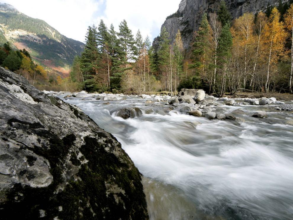 El valle de Bujaruelo es la cuna del Ara, el último río salvaje del Pirineo aragonés.
