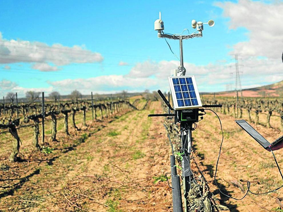 Las tecnologías digitales más avanzadas se van abriendo paso entre la agricultura mundial, en especial en los países más desarrollados.