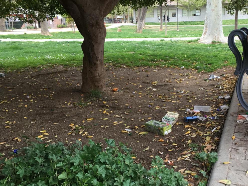 La basura crece junto a los árboles singulares del parque Bruil.