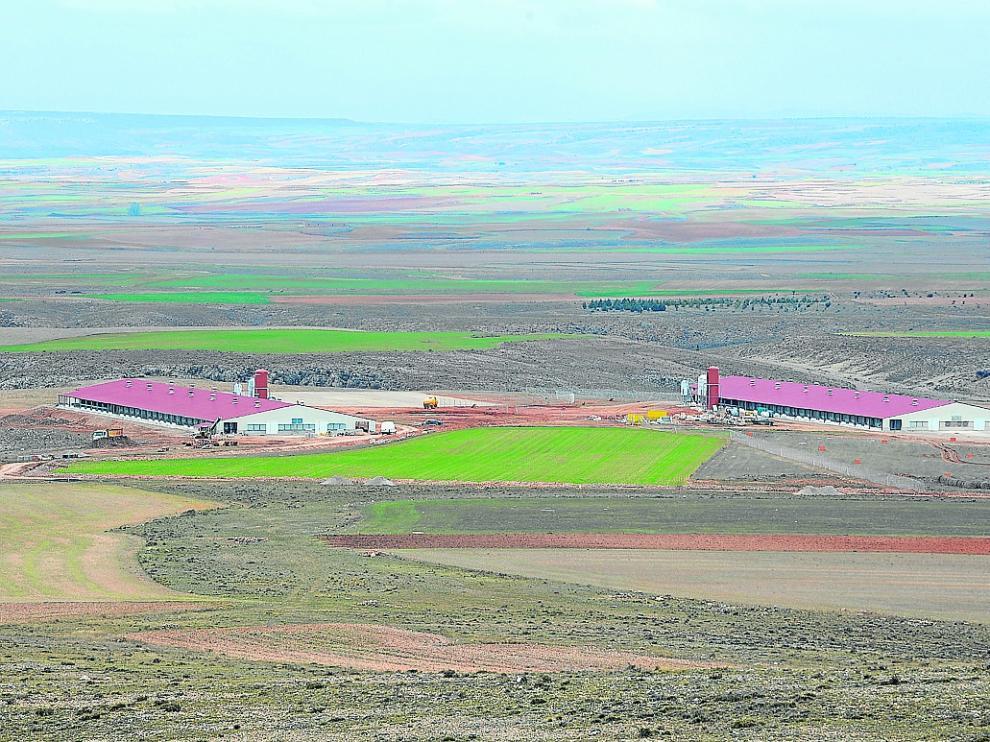 La granja de Huevos Guillén en Perales del Alfambra avanza en sus obras de construcción.