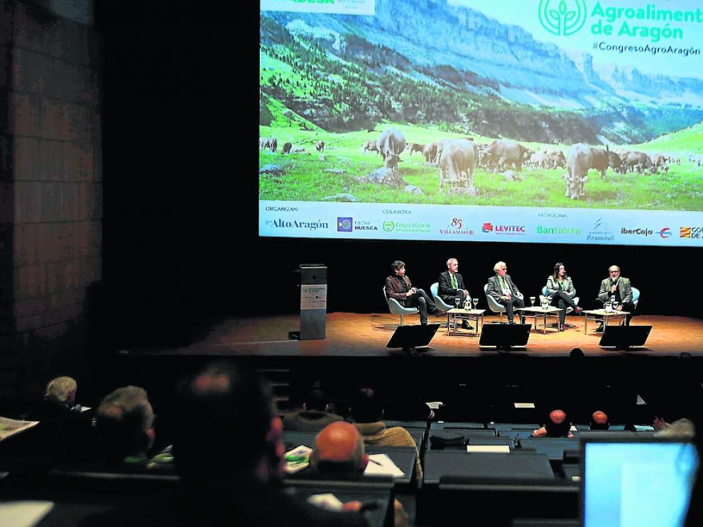 ....Congreso Agroalimentario..PABLO SEGURA PARDINA - 9 - 4 - 19 [[[FOTOGRAFOS]]]