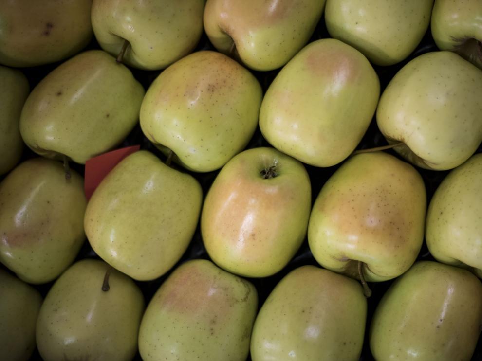 Las extraordinarias propiedades del agua en su balneario cambian la tradicional acepción de este verbo; en el otro extremo de la localidad, Frutas Erruz produce peras y manzanas de lujo.