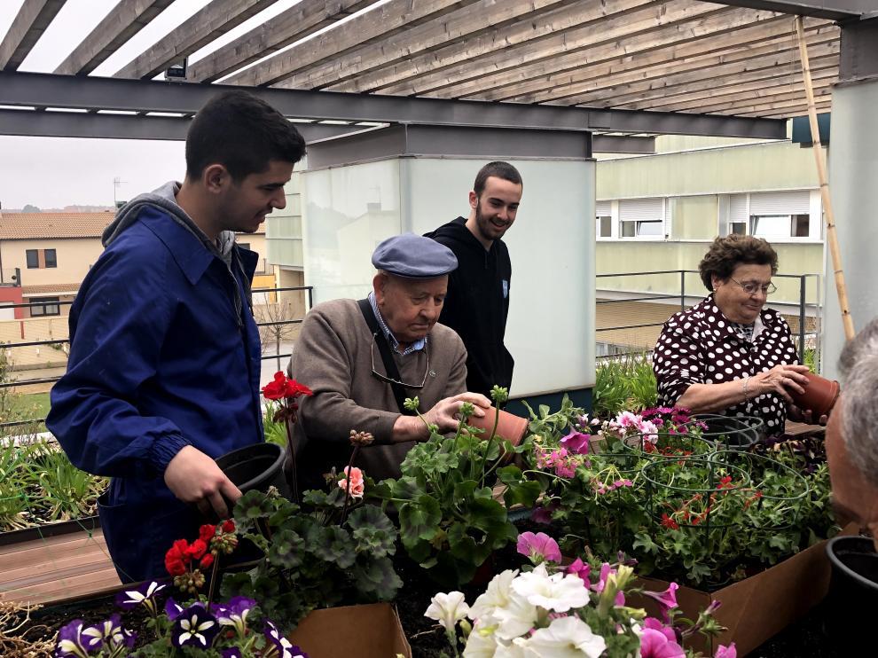 Compartiendo conocimientos, en el invernadero de Producción Agropecuaria
