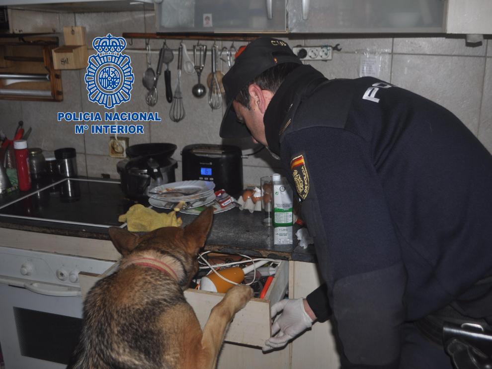 Un agente y un perro policía inspeccionan las instalaciones de la banda.