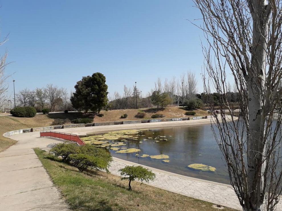 Montecanal quiere recuperar el esplendor de su lago