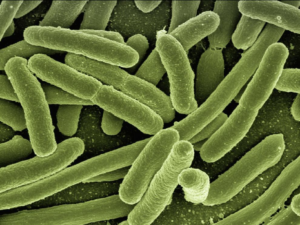 Investigadores españoles diseñan antibióticos que atacan solo las bacterias 'malas' y evitan resistencias.