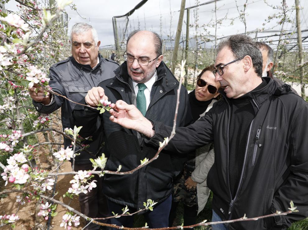 El presidente de Aragón, Javier Lambán, ha visitado la explotación de manzanos en altura de la localidad turolense de Villarquemado