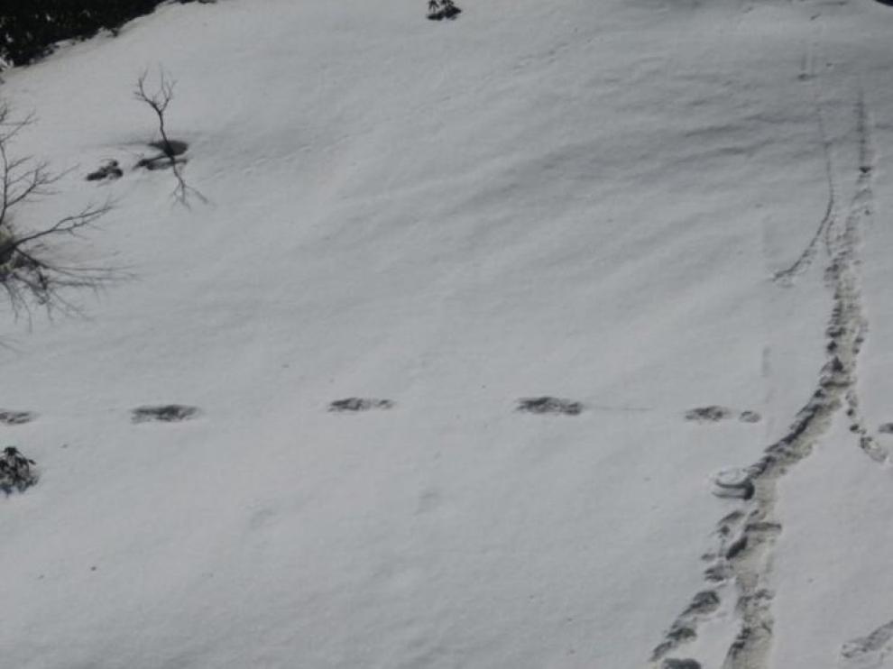 Las supuestas huellas del Yeti publicadas por el ejército indio.