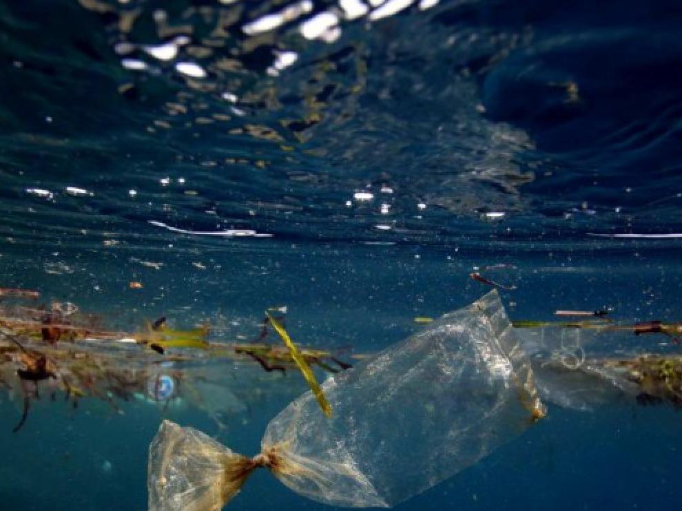 Más allá de criaturas marinas descubrió algunos objetos de procedencia humana, como una bolsa de plástico y algunos envoltorios de caramelos.