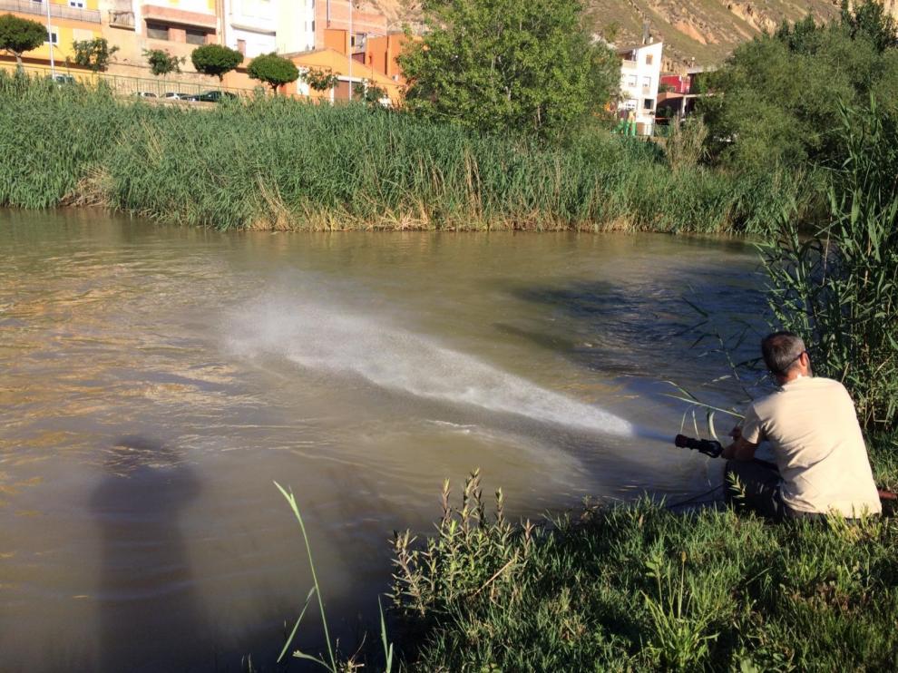 Las primeras aplicaciones se han llevado a cabo en varios tramos del Alcanadre y el Cinca.