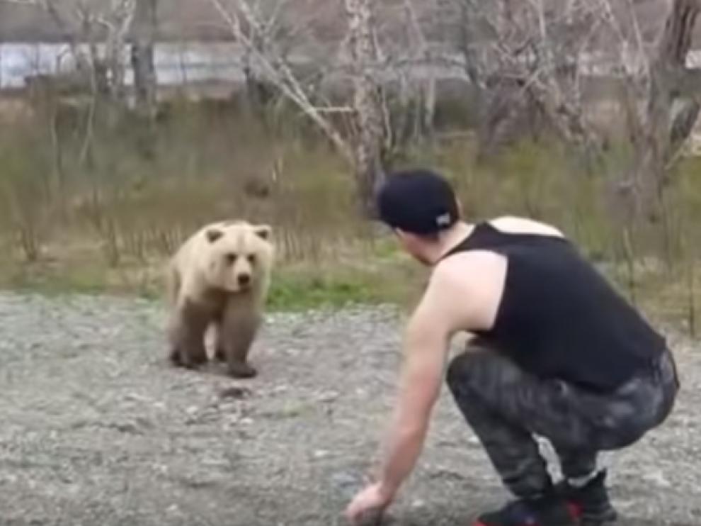 El turista se topó con un oso salvaje por la península de Kamchatka.
