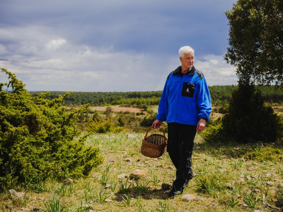 El micólogo Javier Cortés busca setas de primavera en el entorno del Moncayo.