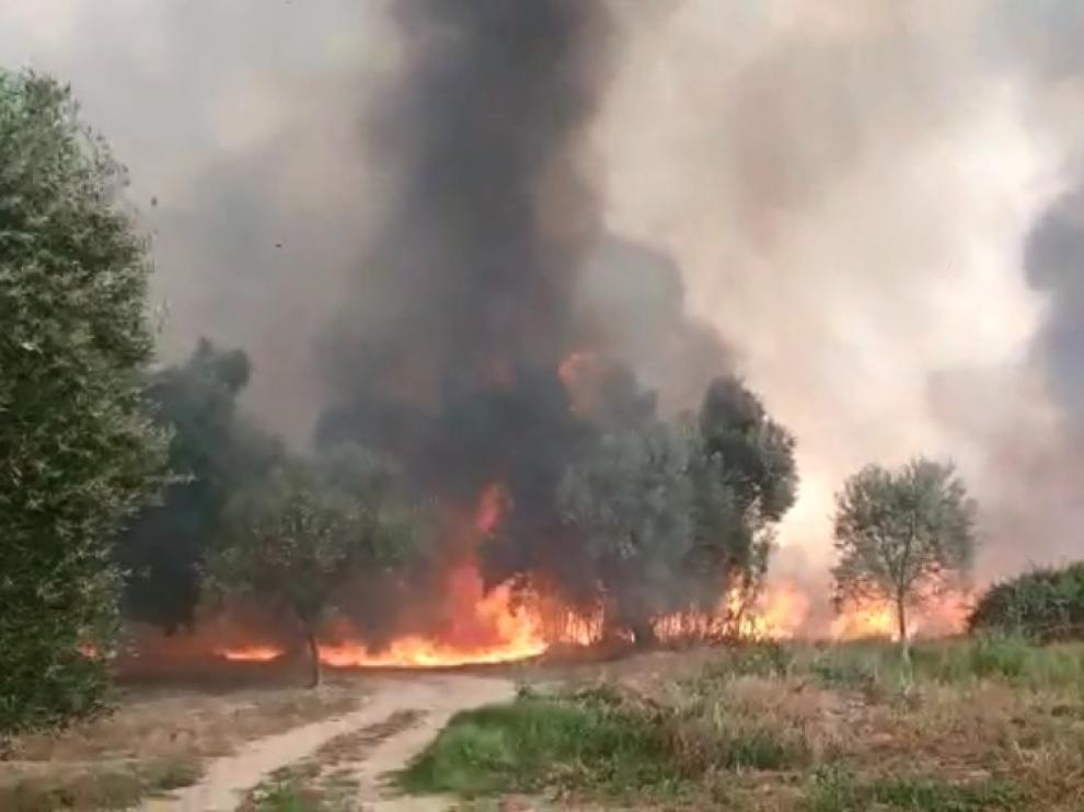 Incendio entre Codo y Belchite