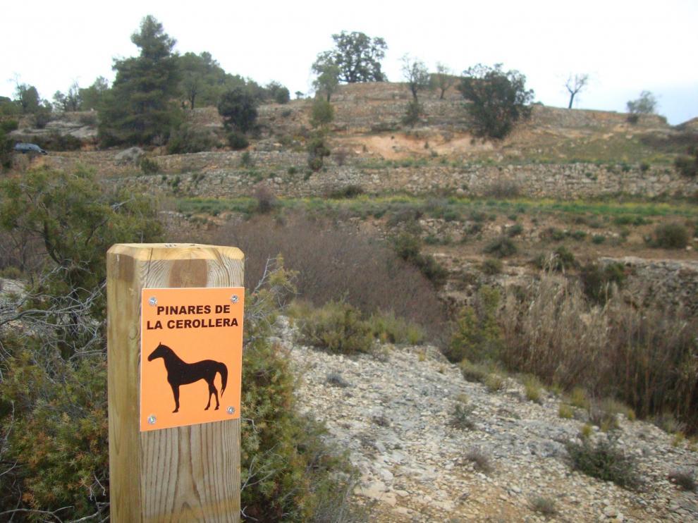 Las señales de la ruta ecuestre se distinguen por su color azul y contienen la figura de un caballo.