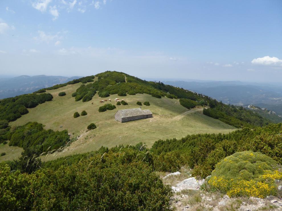 El pico de Santo Domingo, en el municipio de Longás, es el punto más alto de las Cinco Villas.