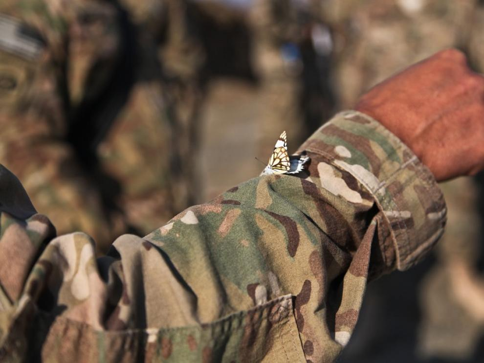 Una mariposa sobre el uniforme de un soldado en Afganistán