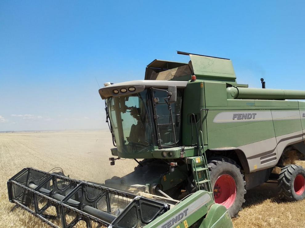 Un agricultor realiza las labores de recolección de cereal en Aragón.