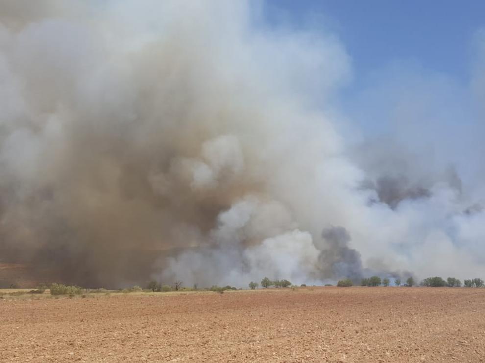 Incendio en una zona agrícola en el término municipal de Villanueva de Huerva.