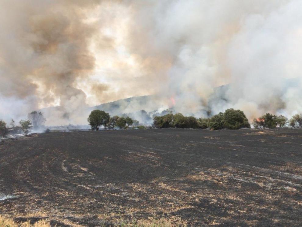 Incendio en Alcampell.