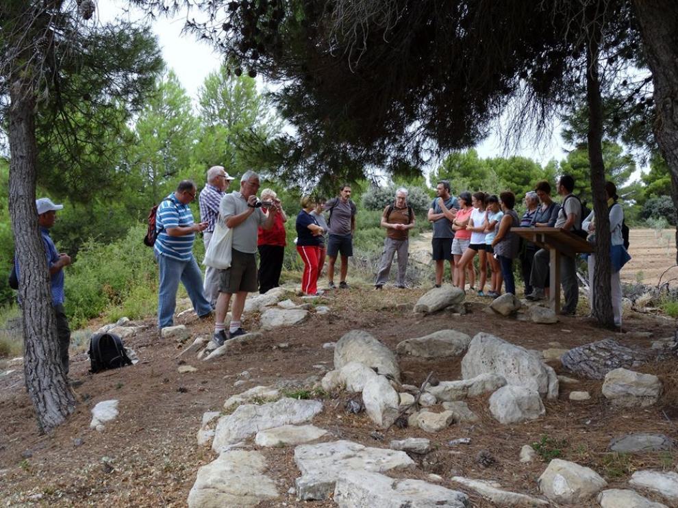 Un grupo de visitantes escucha las explicaciones del guía en el yacimiento de los túmulos de Cretas.