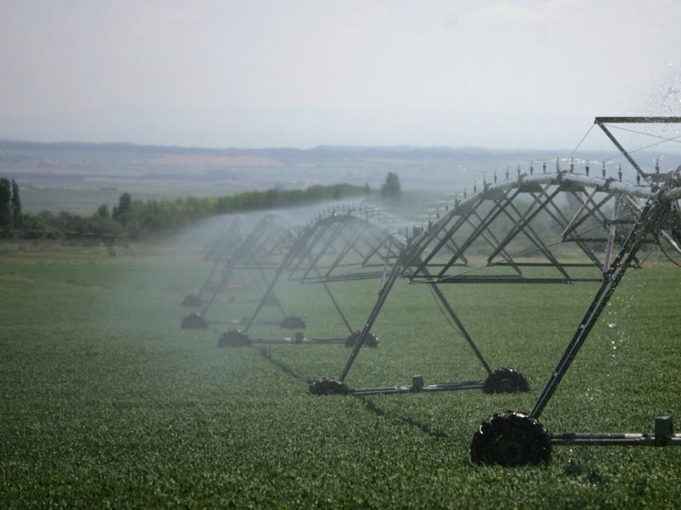 Los efluentes de la agricultura y de las explotaciones ganaderas son el principal foco de contaminación por nitratos.
