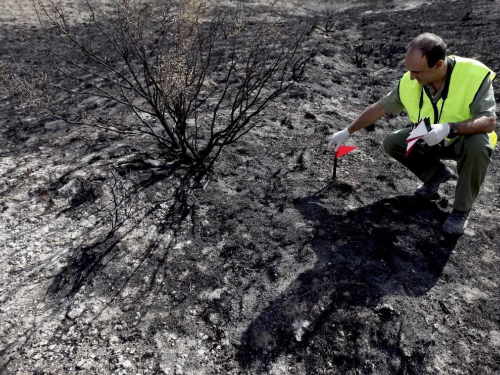 Sergio Ramos también formó parte de la brigada de investigación de incendios forestales del Gobierno de Aragón.