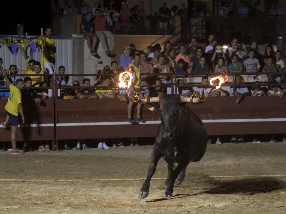 Toro embolado en las fiestas de Teruel.