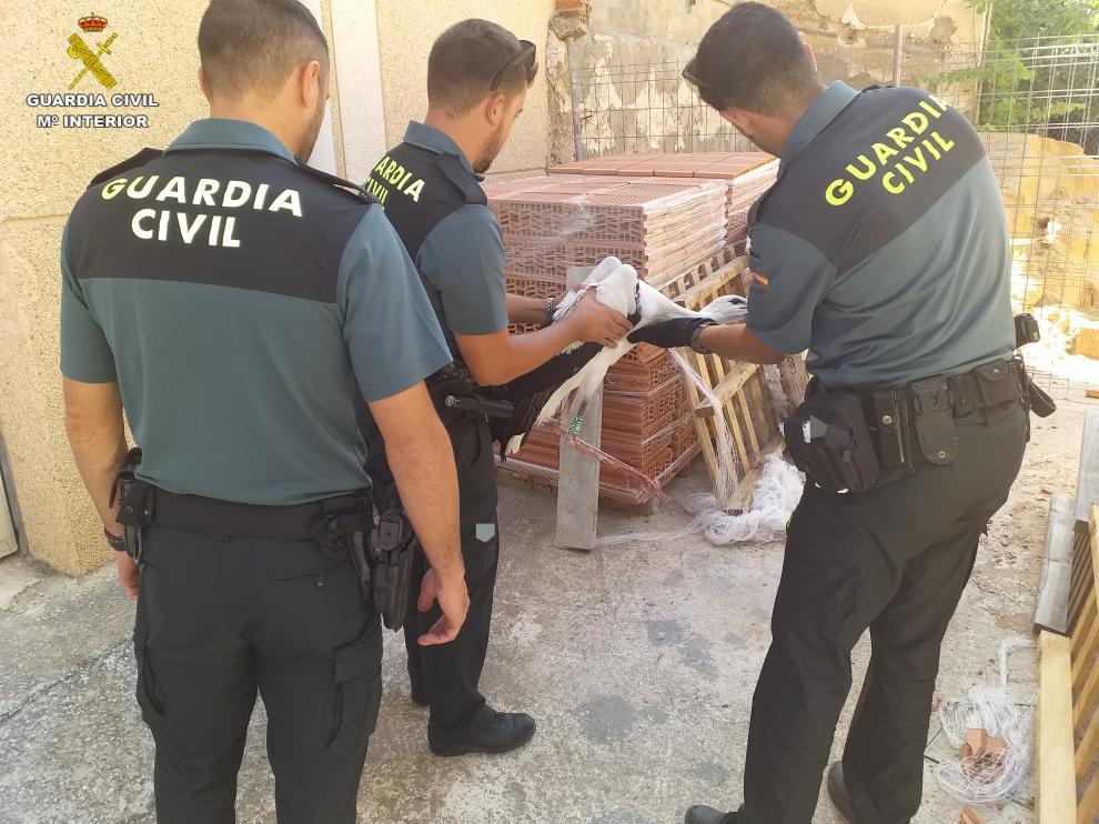 Los agentes han liberado a la cigueña y ha sido trasladada al centro de Recuperación de Animales Silvestres de La Alfranca.