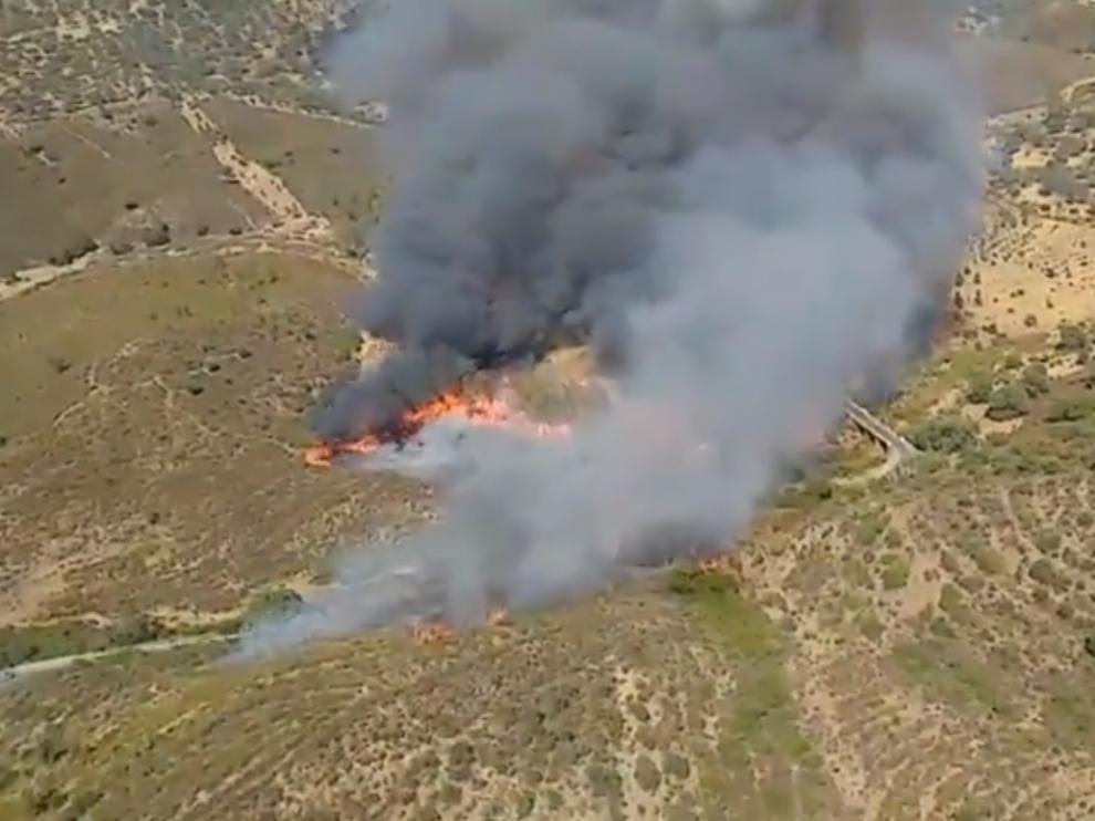 Evacuadas 40 personas por un incendio forestal en El Madroño (Sevilla).