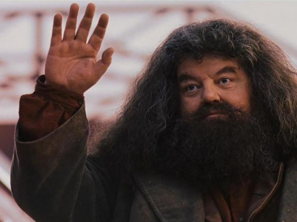 Aunque parecía ser el protector de joven mago, todo apunta a que traicionó a Potter en más de una ocasión.