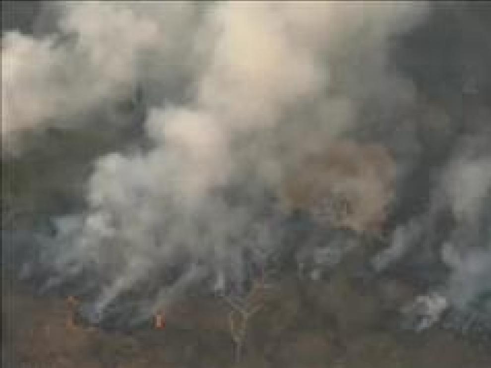 El número de incendios en Brasil aumenta un 83 por ciento en un año