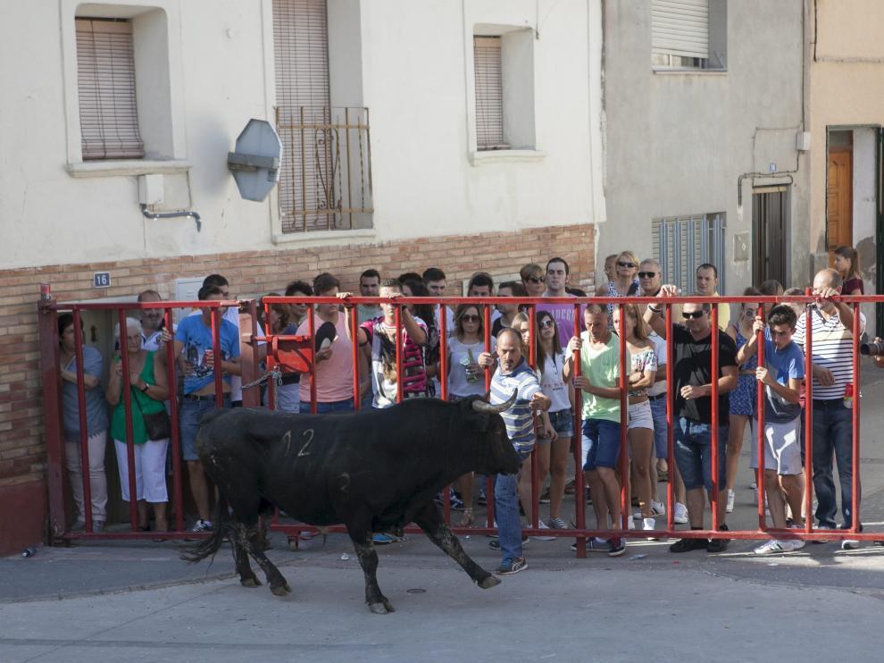 Imagen de archivo de un encierro celebrado por las calles de Mallén.