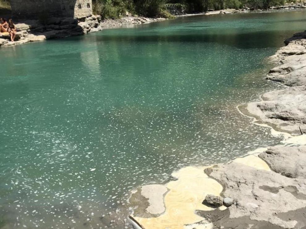 La mala calidad del agua del Ésera se aprecia a simple vista.