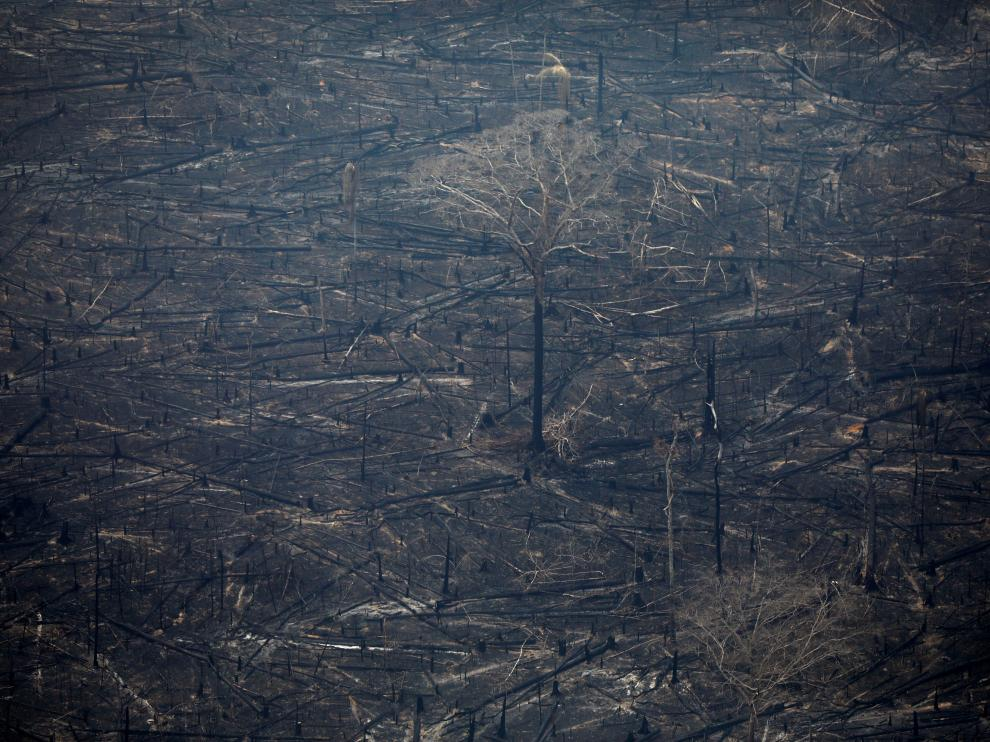 An aerial view of a deforested plot of the Amazon in Boca do Acre, Amazonas state, Brazil August 24, 2019. REUTERS/Bruno Kelly [[[REUTERS VOCENTO]]] BRAZIL-ENVIRONMENT/WILDFIRES