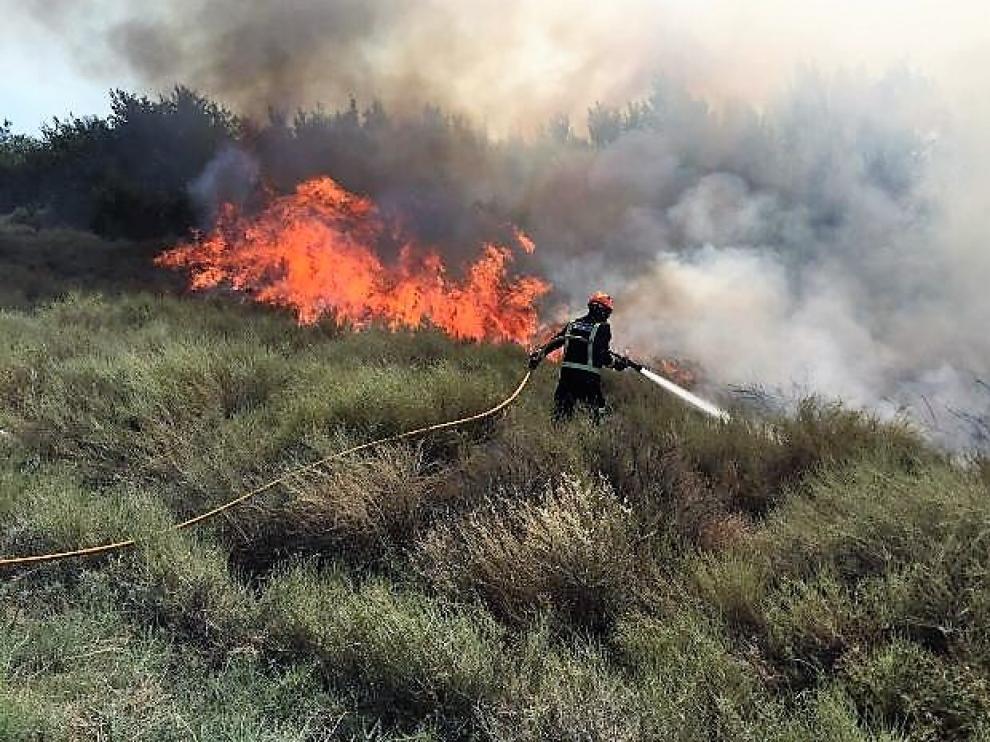 El incendio se ha producido junto a la carretera N-II, en Peñalba.