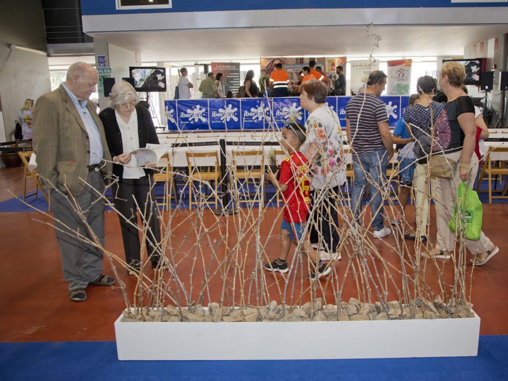 La Feria de Muestras de Calatayud abre sus puertas en las instalaciones del recinto de Claretianos.