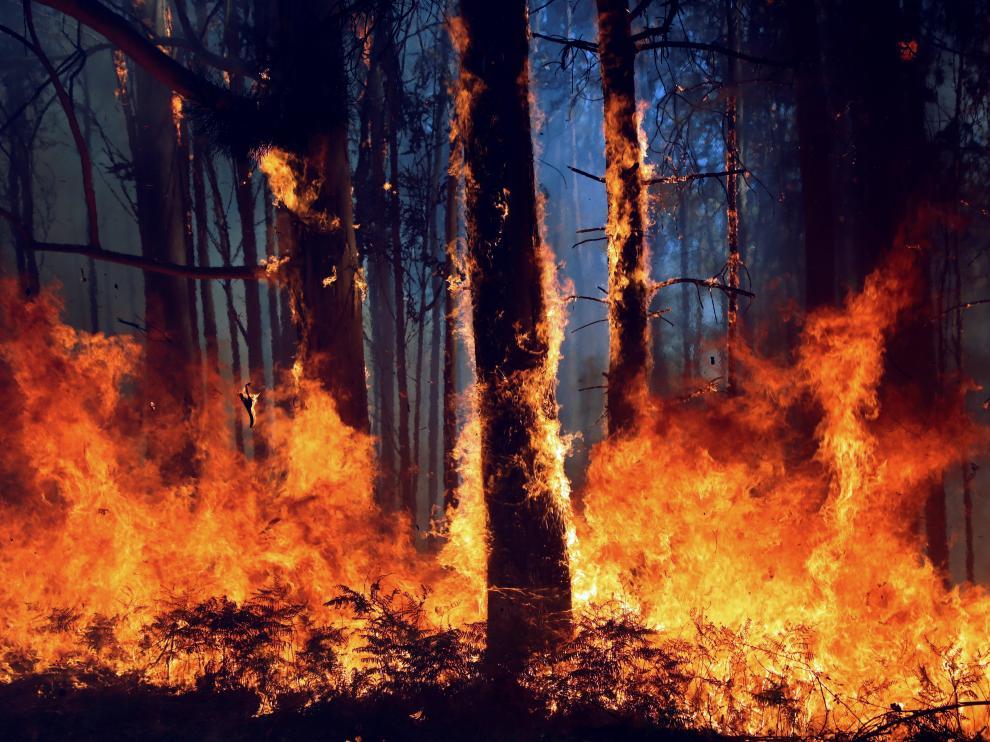 La aldea de A Carballosa, en Porto do Son ha sido afectada hoy por un gran incendio forestal en la que participan en su extinción se encuentran brigadas forestales y la Unidad Militar de emergencias