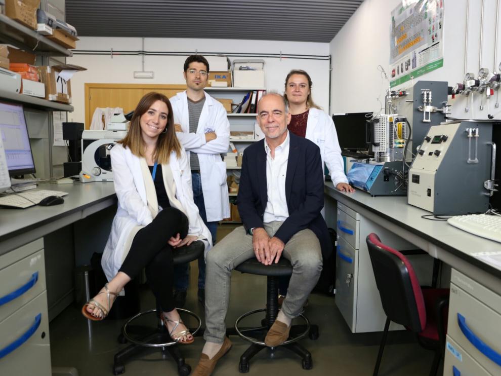 Sentados, María Sancho y Jesús Santamaría. De pie, Víctor Sebastián y Pilar Martín-Duque, en un laboratorio del Instituto de Nanociencia de Aragón.
