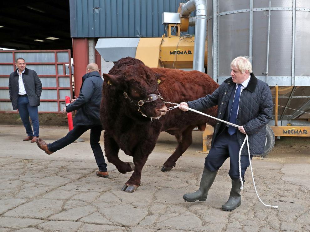 El primer ministro británico, Boris Johnson, de visita en una granja