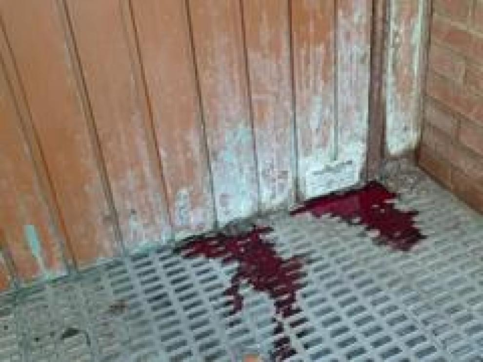 Un hombre ha aparecido muerto y con un cuchillo clavado en el pecho en una calle de Torrero, mientras minutos antes su expareja era localizada en una calle próxima con heridas de arma blanca